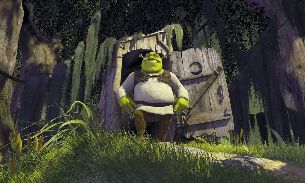 Es war einmal in einem dunklen Sumpf. Dort lebte ein hässliches grünes Monster: Shrek, der Oger ... - Bildquelle: TM &   2001 DreamWorks L.L.C.