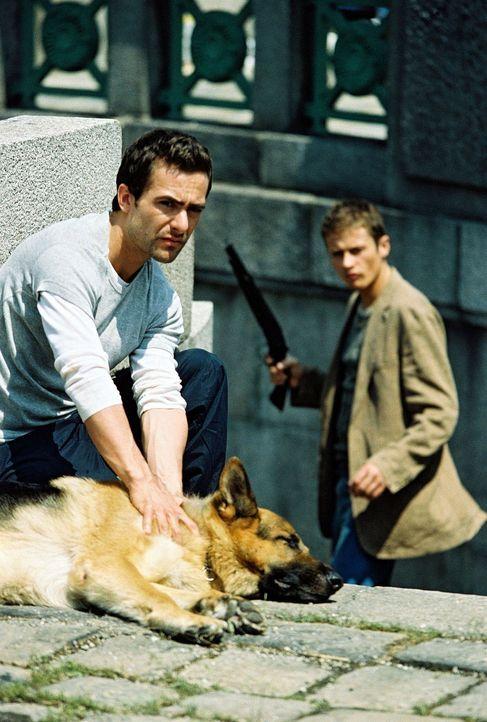 Huneck (Roman Knizka, r.) rächt sich an Rex und schießt ihn an. Auch Marc (Alexander Pschill, l.) verletzt sich ... - Bildquelle: Sat.1
