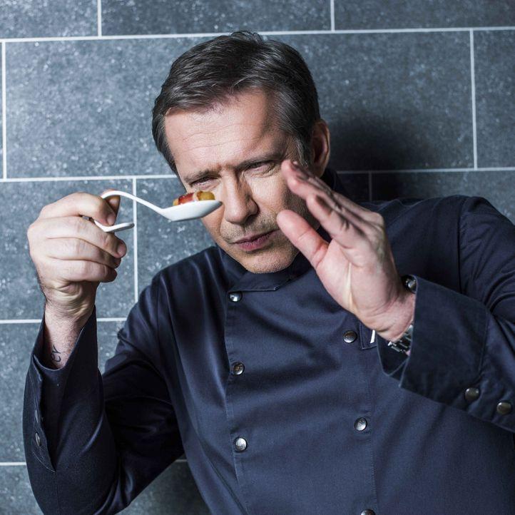 """Gemeinsam mit den drei weiteren Spitzenköchen entscheidet Alexander Herrmann, wer Sieger bei """"The Taste"""" wird ... - Bildquelle: Arne Weychardt SAT.1"""
