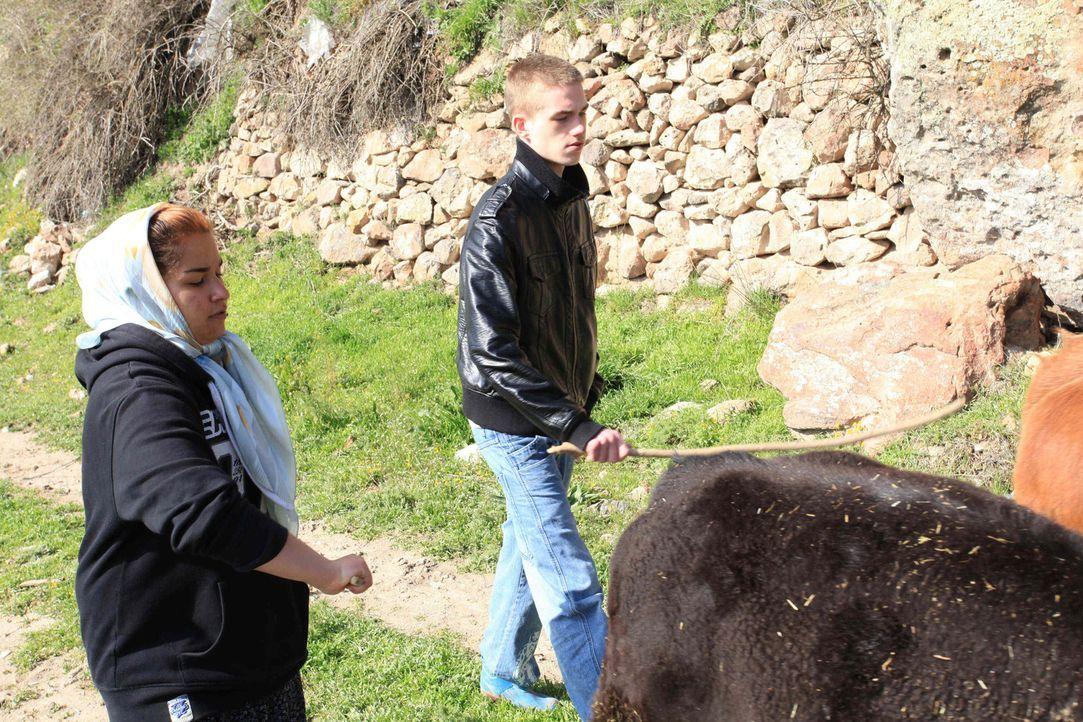 Bei Familie Erdal in der Tükei sollen Kalica (l.) und Dominik (r.) lernen, was es bedeutet, Verantwortung zu übernehmen. - Bildquelle: kabel eins
