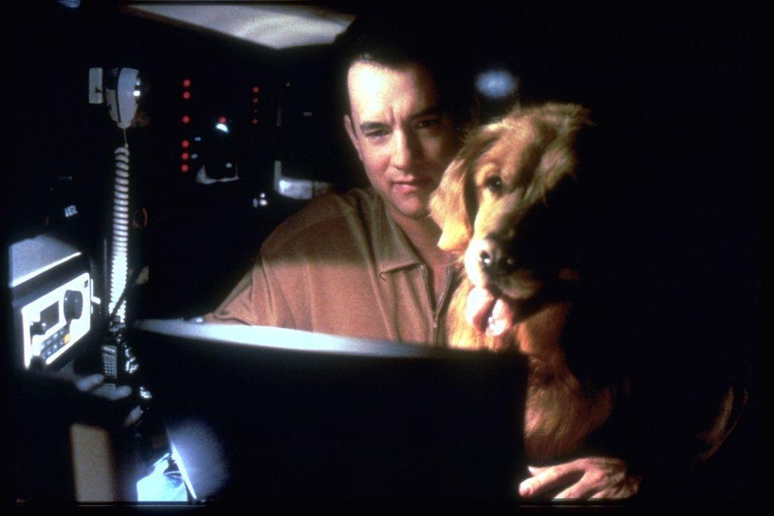 """Neuerdings verbringt Joe (Tom Hanks) täglich viele Stunden vor seinem Computer, denn er will kein Mail von dem anonymen """"Shopgirl"""" verpassen - bis e... - Bildquelle: Warner Bros. Pictures"""