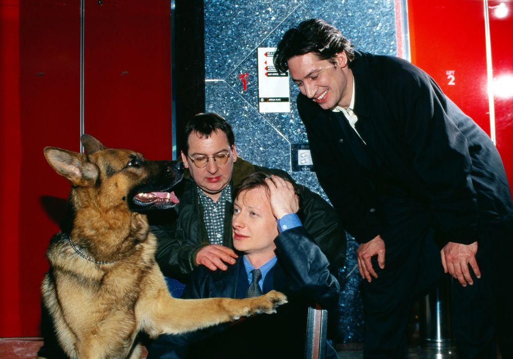 Lobner ist den Ermittlern entkommen. Böck (Heinz Weixelbraun, M.) ist noch ganz benommen - Rex, Moser (Tobias Moretti, r.) und Höllerer (Wolf Bachof... - Bildquelle: Ali Schafler Sat.1