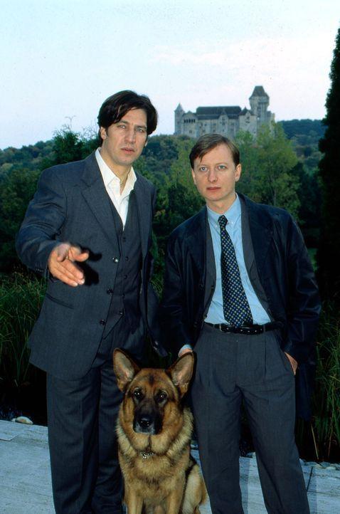 Kommissar Moser (Tobias Moretti, l.) und Christian Böck (Heinz Weixelbraun, r.) observieren das Haus von Professor Dorner. Mit einem guten Ergebnis? - Bildquelle: Ali Schafler Sat.1
