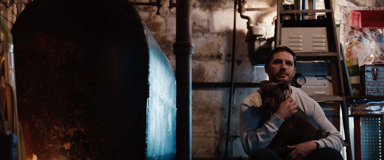 Bob Saginowski (Tom Hardy) arbeitet als Barkeeper in einer Gangster-Kneipe. Als er auf dem Nachhauseweg einen misshandelten Pitbull-Welpen findet, l... - Bildquelle: 2014 Twentieth Century Fox Film Corporation. All rights reserved.