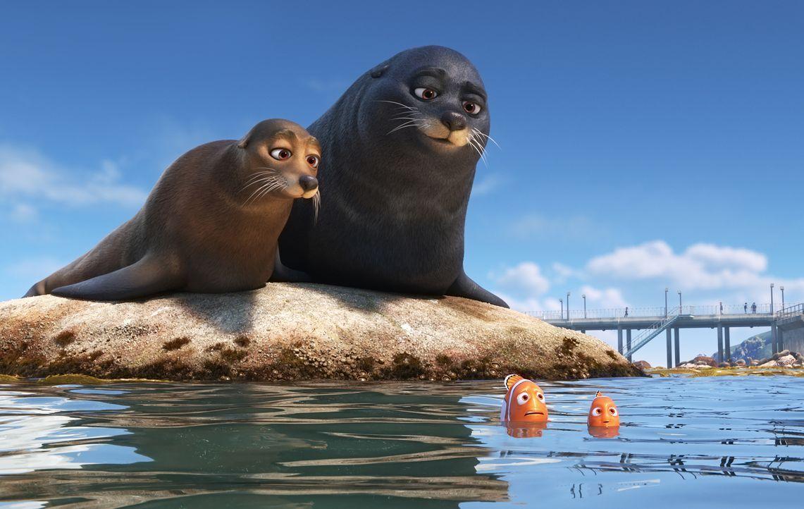 (hinten) Fluke und Rudder; (vorne) Marlin und Nemo - Bildquelle: Disney/Pixar