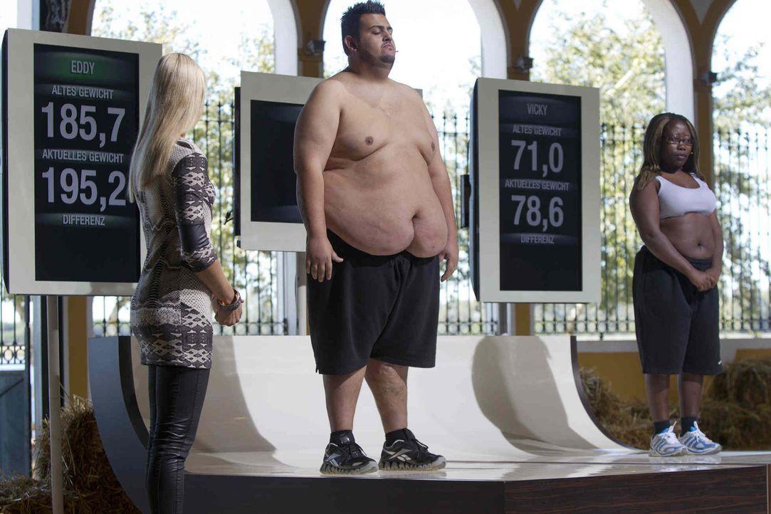 Die Kandidaten müssen sich bei schwierigen Prüfungen verausgaben, um so viel Gewicht wie möglich abzunehmen. Am Ende zeigt sich dann auf der Waag... - Bildquelle: Enrique Cano SAT.1
