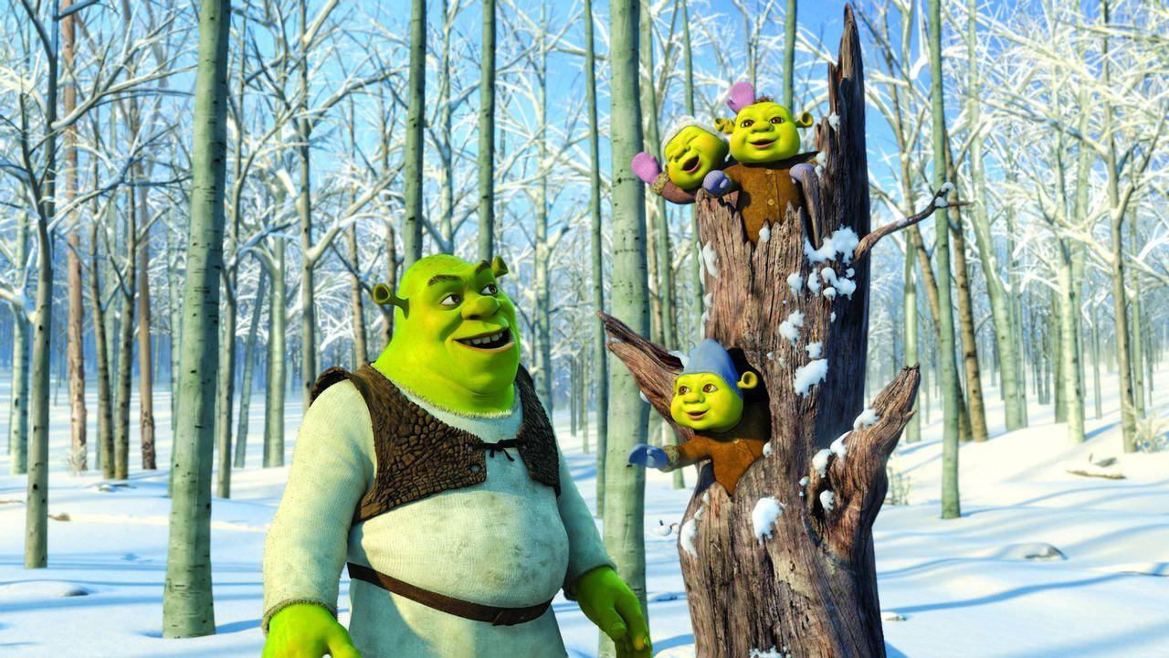 Eigentlich wollte Shrek das Weihnachtsfest in einem bescheidenen Rahmen begehen, doch schon bald steckt er mitten im größten Weihnachtsstress ... - Bildquelle: 2007   DreamWorks Animation LLC. All rights reserved.