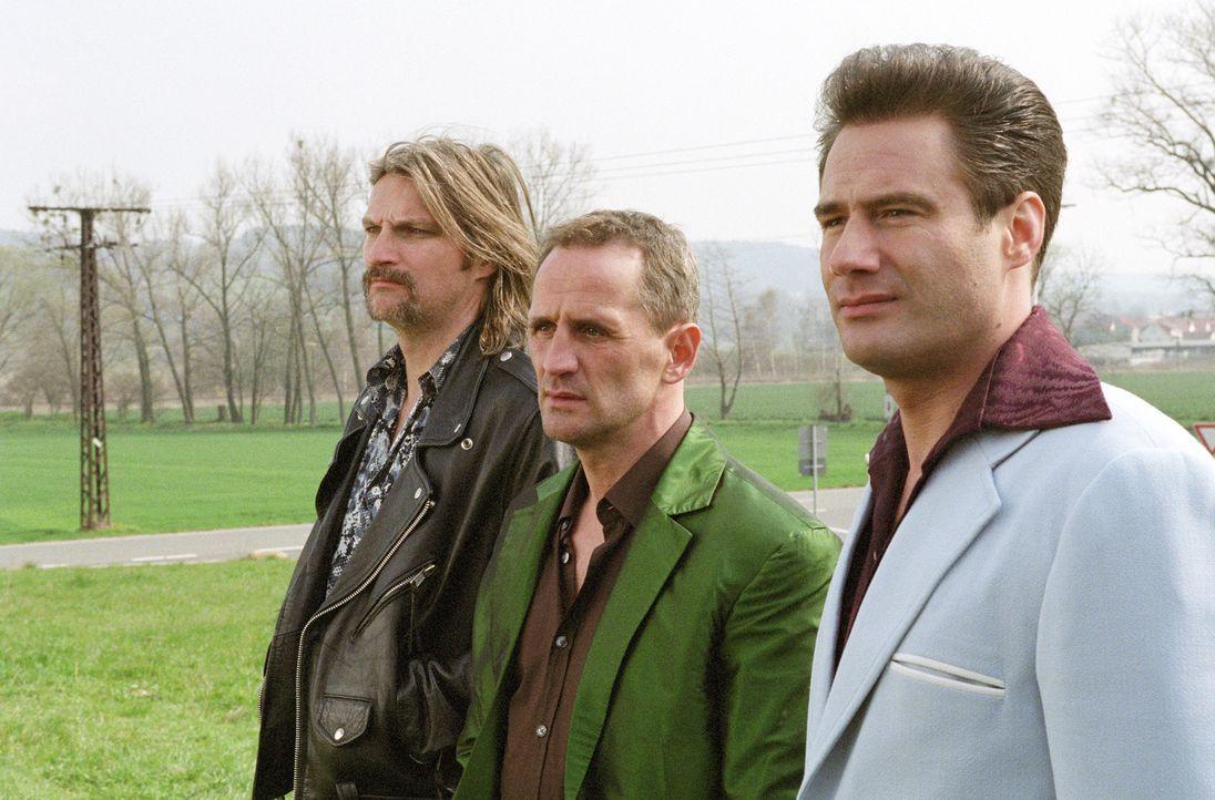 Haben großes vor: Tommy (Sasha, r.), Ossi (Tim Wilde, M.) und Karl  (Stefan Jürgens, l.) ... - Bildquelle: Universum Film (UFA)