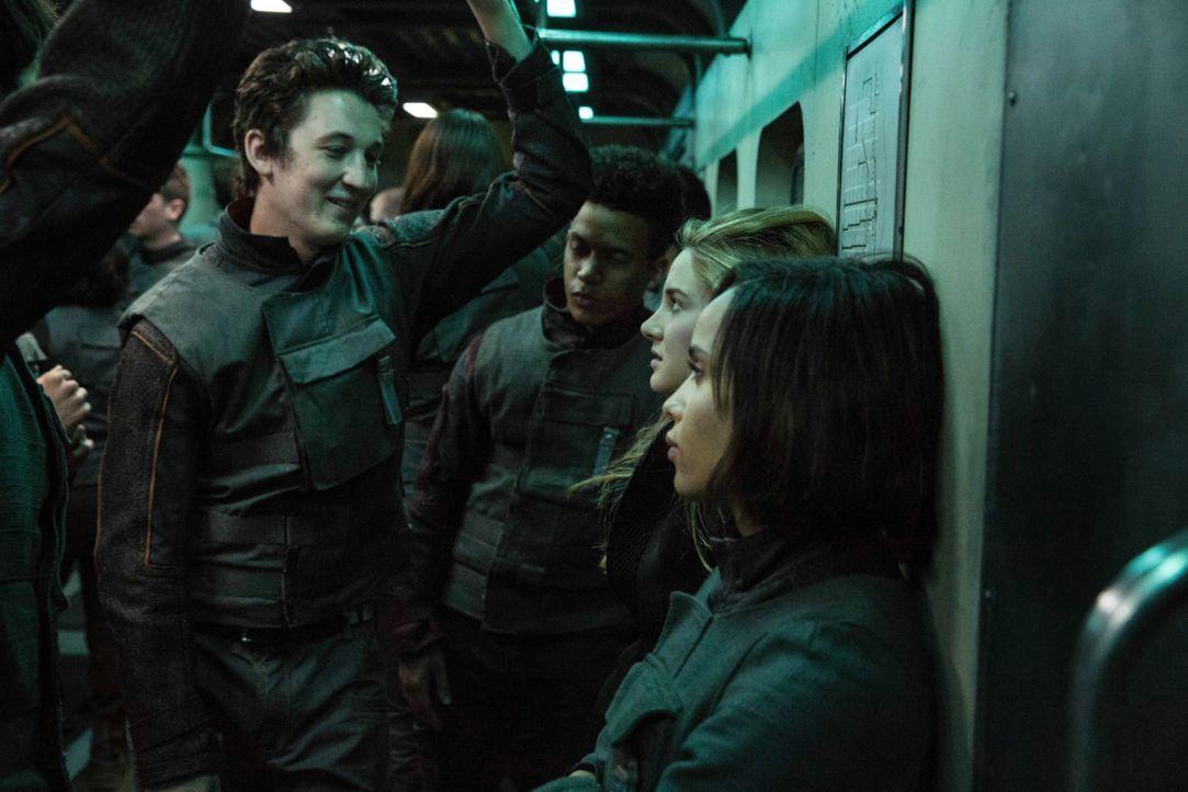 Tris (Shailene Woodley, 2.v.r.) versucht sich ihre Position in der Fraktion der mutigen Ferox zu erkämpfen, doch Peter (Miles Teller, l.) macht ihr... - Bildquelle: 2014 Concorde Filmverleih GmbH