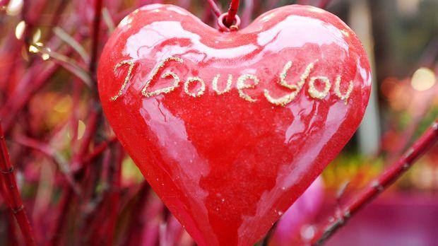 Valentinstag Geschenk für Kerl gerade begann DatingRachel truehart und nick peterson dating