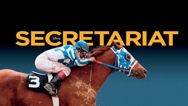 Sekretariat Pferd