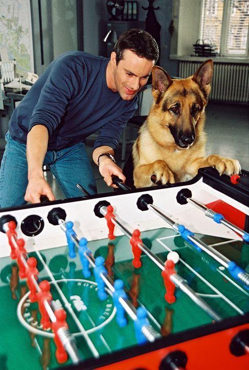 Kommissar Brandtner (Gedeon Burkhard, l.) und Rex entspannen sich bei einer Partie Tischfußball ... - Bildquelle: Sat.1