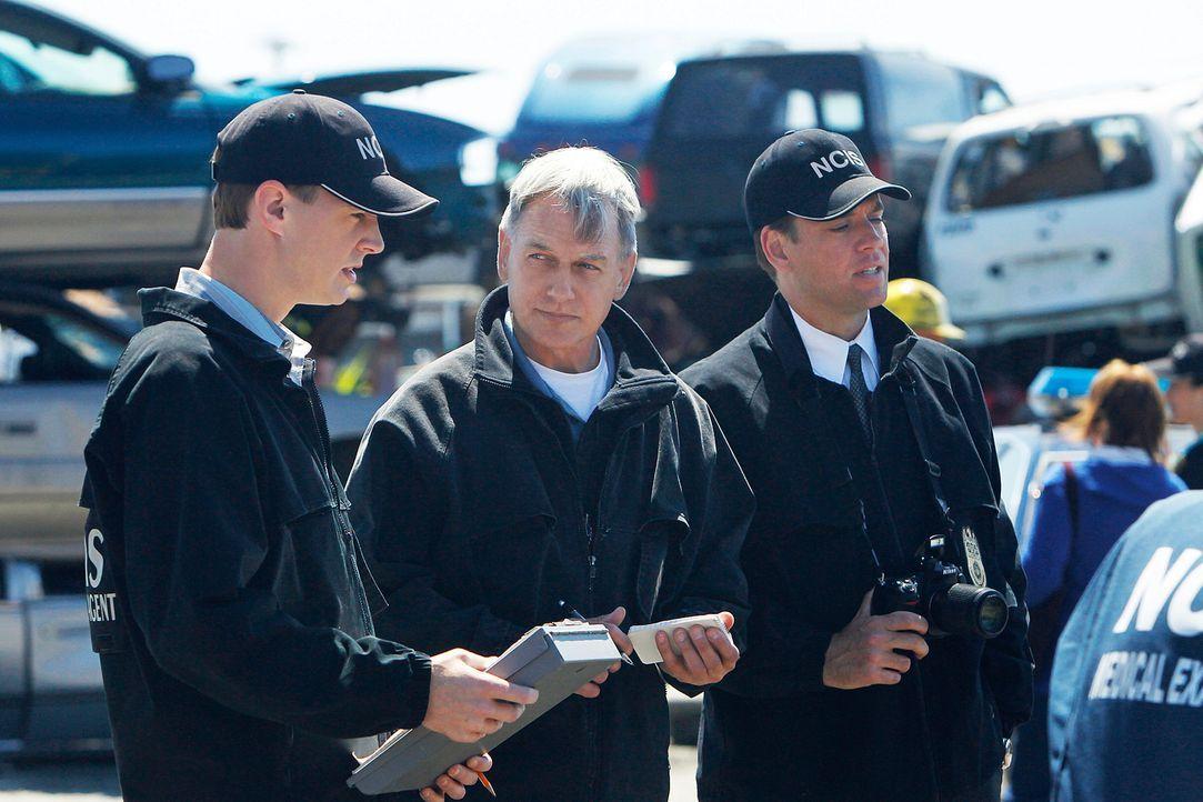 Gibbs (Mark Harmon, M.), DiNozzo (Michael Weatherly, r.) und McGee (Sean Murray, l.) ... - Bildquelle: CBS Television