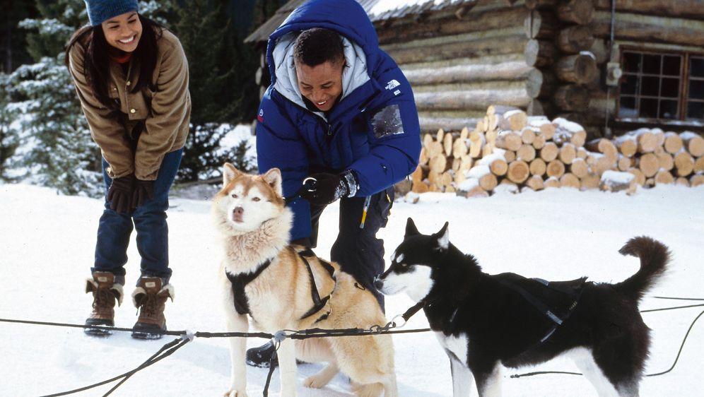 Snow Dogs - 8 Helden auf 4 Pfoten - Bildquelle: Disney Enterprises, Inc.