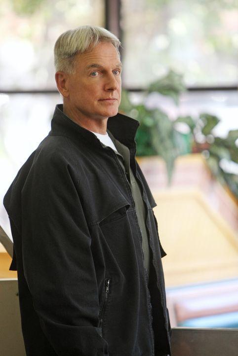 Eine Entführung zwingt Gibbs (Mark Harmon) und Fornell zur Zusammenarbeit, damit sie ihrem größten Feind gegenübertreten können. Doch werden si... - Bildquelle: CBS Television