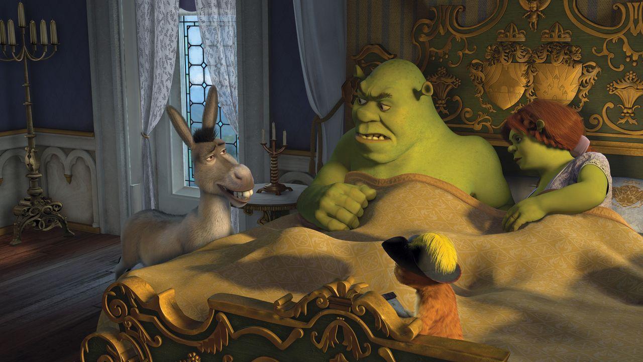 Das grüne Sumpfmonster Shrek und seine geliebte Fiona leben glücklich und zufrieden im wunderschönen Weit Weit Weg. Dann allerdings stirbt der König... - Bildquelle: TM &   2007 Dreamworks Animation LLC