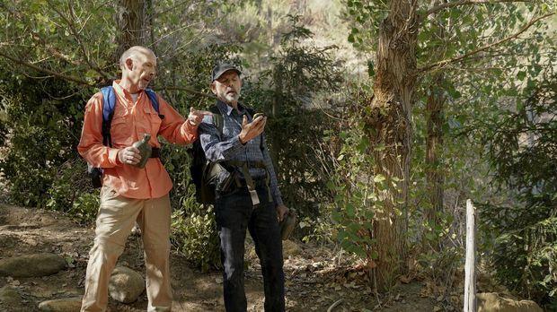 Navy Cis - Navy Cis - Staffel 16 Episode 4: Drei Männer Im Wald