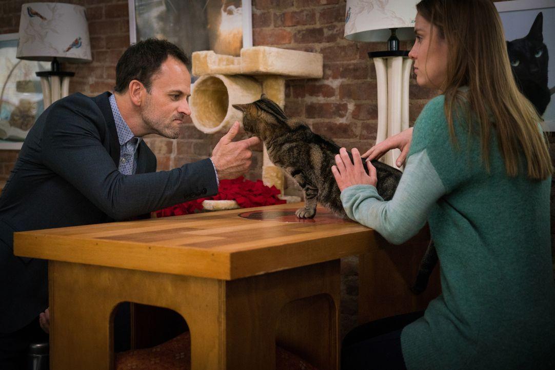 Können Katzenbesitzerin Fiona Helbron (Betty Gilpin, r.) und ihr haariger Begleiter Holmes (Jonny Lee Miller, l.) bei der Jagd auf einen Computerhac... - Bildquelle: Michael Parmelee 2015 CBS Broadcasting Inc. All Rights Reserved.