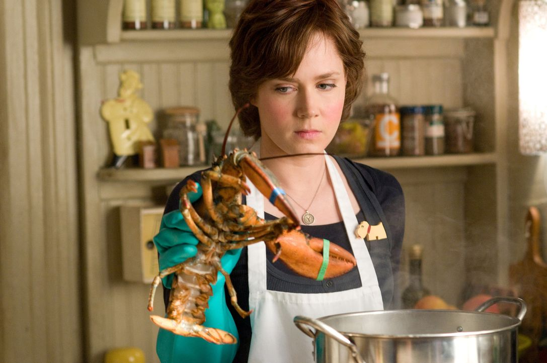 Julie (Amy Adams) kocht innerhalb eines Jahres sämtliche Rezepte im Kochbuch-Klassiker von Julia Childs nach und blogt über ihre Erfahrungen - seh... - Bildquelle: 2009 Columbia Pictures Industries, Inc. All Rights Reserved.