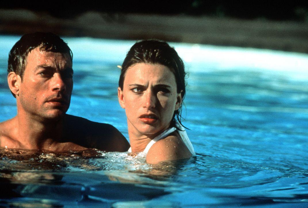 Nach einem Einsatz im ehemaligen Jugoslawien beschließt Jack (Jean-Claude van Damme, l.), seinen gefährlichen Job an den Nagel zu hängen und sich... - Bildquelle: Columbia TriStar