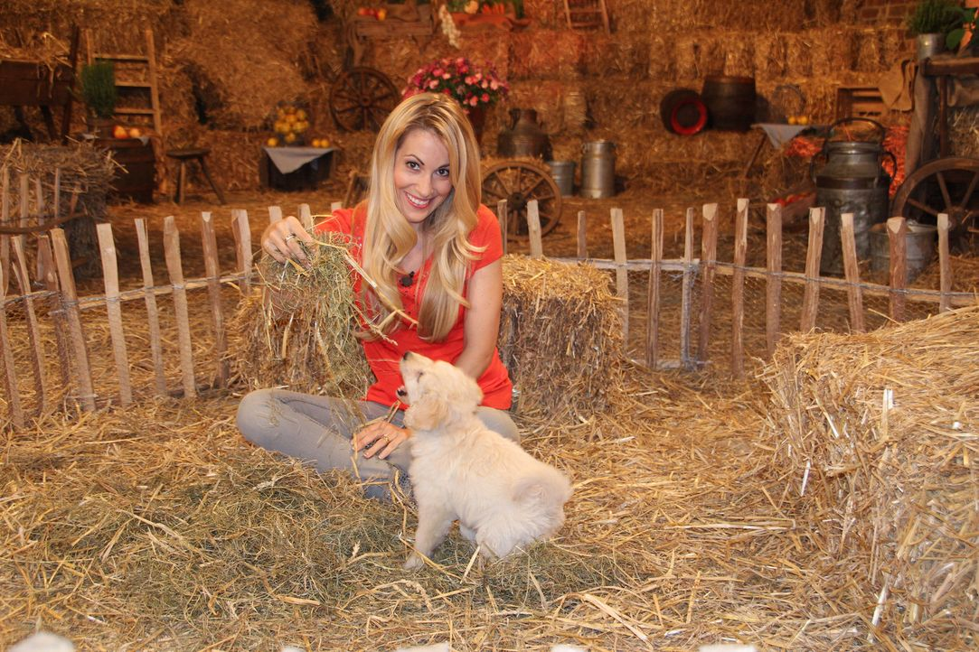 """In """"Die wunderbare Welt der Tierbabys"""" ist Andrea Kaiser dabei, wenn Schaf, Alpaka, Strauß und Co. das Licht der Welt erblicken ... - Bildquelle: Sat.1"""
