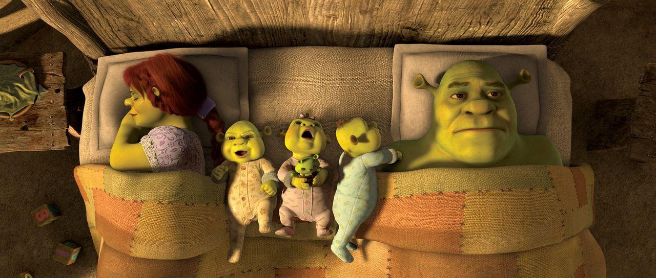 Eigentlich führt Shrek (r.) ein glückliches Leben mit seiner Frau Fiona (l.) und ihren gemeinsamen Kindern, doch hin und wieder sehnt er sich nach... - Bildquelle: 2012 DreamWorks Animation LLC. All Rights Reserved.