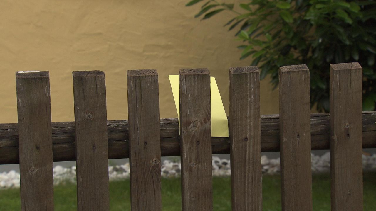 Fluch-der-Vergangenheit21 - Bildquelle: SAT.1