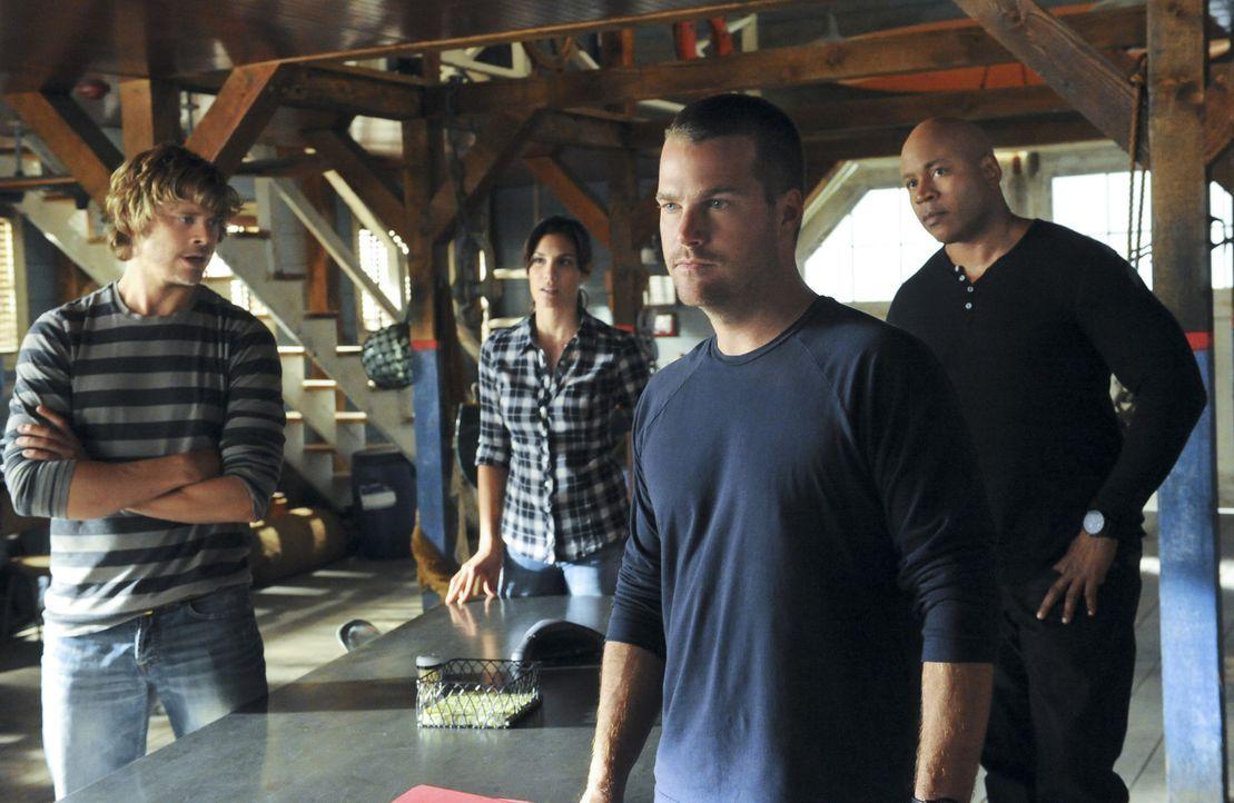 Versuchen alles, um das Chamäleon dingfest zu machen: Callen (Chris O'Donnell, 2.v.r.), Sam (LL Cool J, r.), Kensi (Daniela Ruah, 2.v.l.) und Deeks... - Bildquelle: CBS Studios Inc. All Rights Reserved.