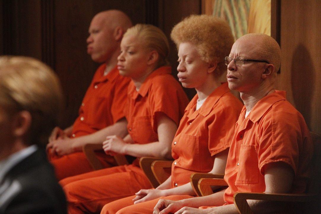 Harry und Tommy verteidigen vier tansanische illegale Albinos. Da ihnen in ihrer Heimat Lebensgefahr droht, wollen sie die Abschiebung verhindern .... - Bildquelle: Warner Bros. Television
