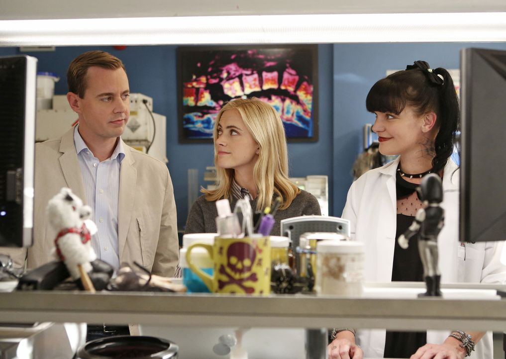 Das Team um McGee (Sean Murray, l.), Abby (Pauley Perrette, r.) und Eleonor (Emily Wickersham, M.) muss herausfinden, ob der Mord an der Ehefrau ein... - Bildquelle: 2014 CBS Broadcasting, Inc. All Rights Reserved