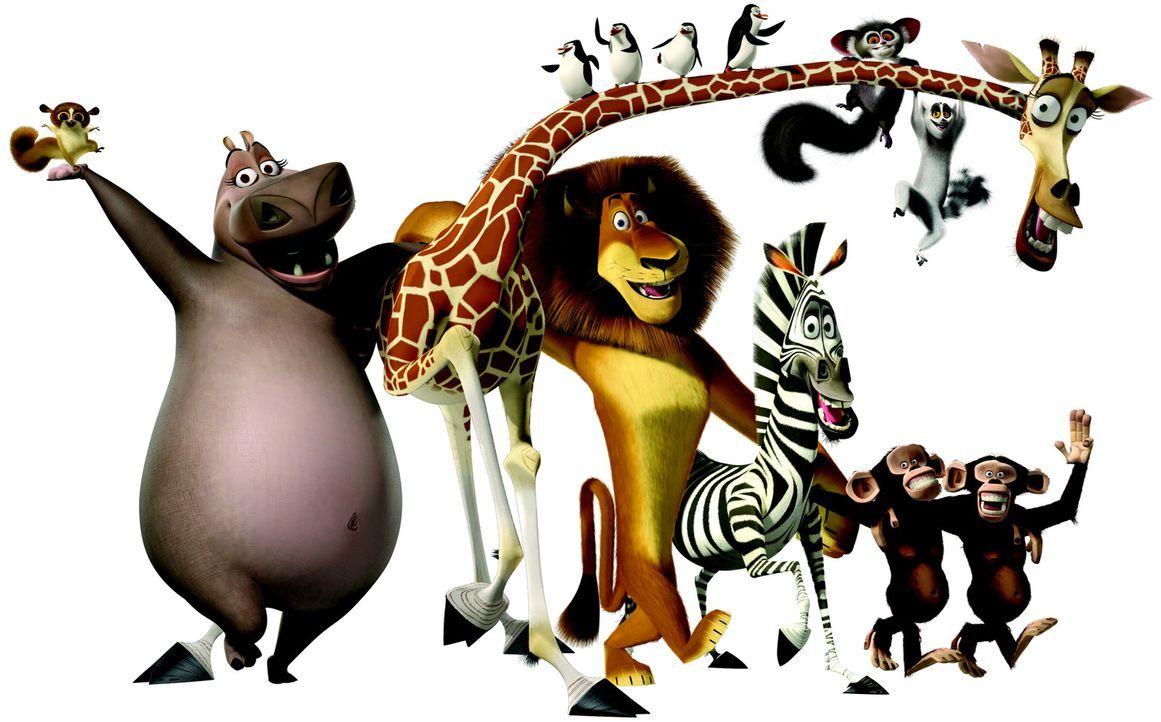 Madagascar - Bildquelle: TM &   2004 DREAMWORKS ANIMATION SKG.