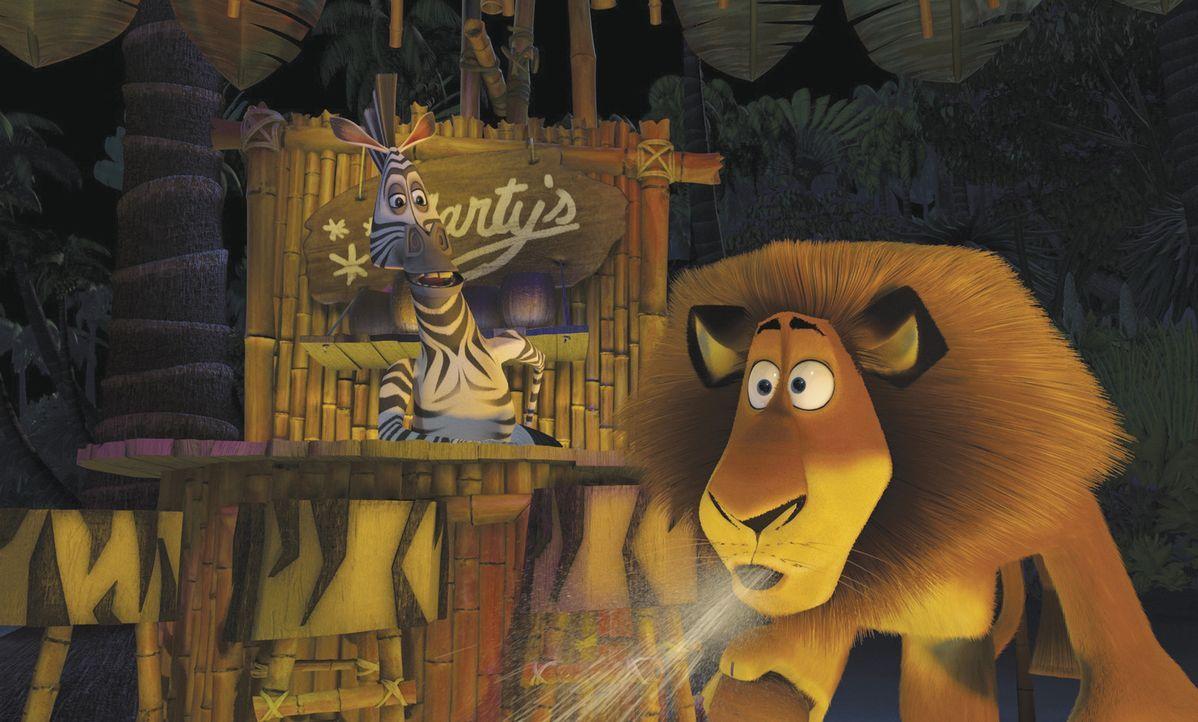 Im Zoo leben der selbstherrliche Löwe Alex, sein bester Kumpel, das hyperaktive Zebra Marty und ihre zwei Freunde die Nilpferd-Dame Gloria und die... - Bildquelle: TM &   2004 DREAMWORKS ANIMATION SKG.