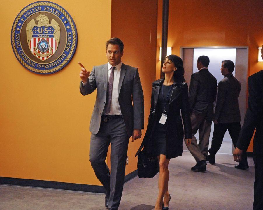 Während der Ermittlungen in einem neuen Fall, muss Tony (Michael Weatherly, l.) mit seiner ehemaligen Verlobten Wendy Miller (Perrey Reeves, r.) zus... - Bildquelle: 2012 CBS Broadcasting Inc. All Rights Reserved.