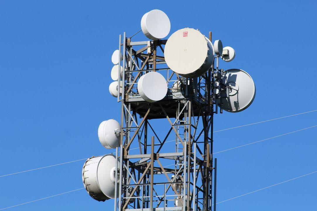 Umweltschutz dank 5G. Mit neuartigen Sensoren können Wissenschaftler die Nat... - Bildquelle: SAT.1 CH