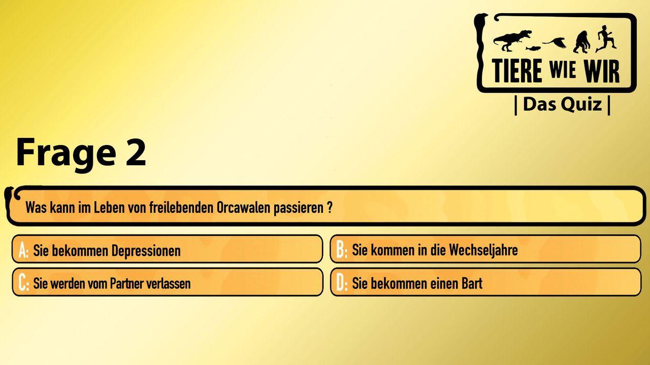 2_Frage