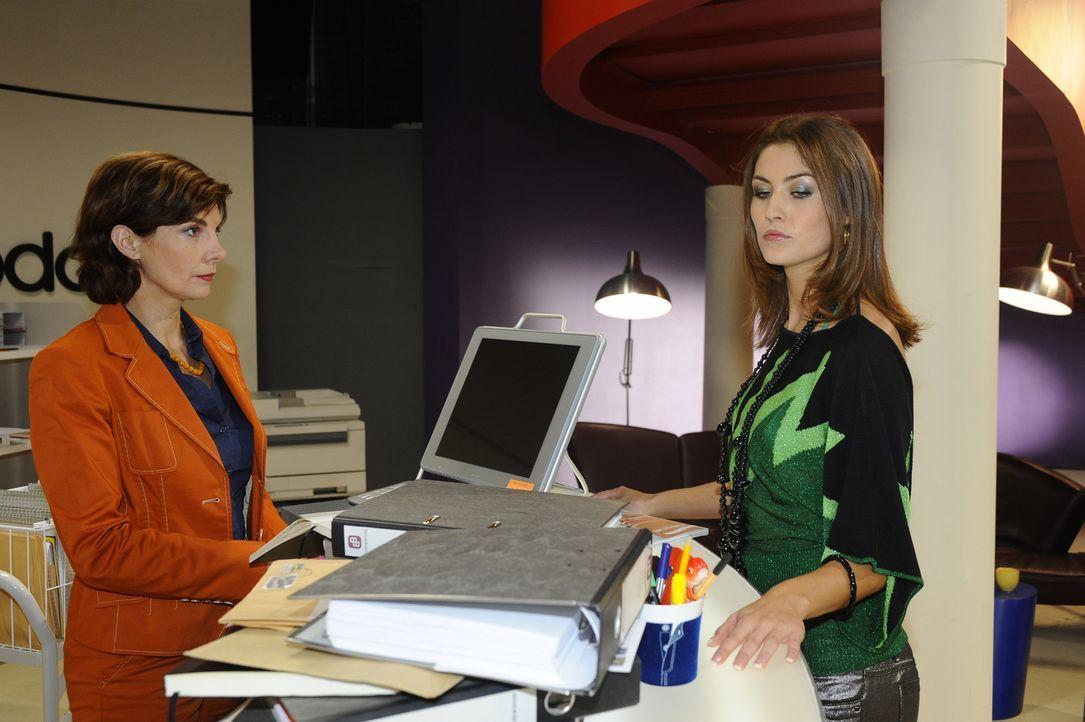 Sind sich auf Anhieb unsympathisch: Steffi (Karin Kienzer, l.) und Jessica (Fiona Erdmann, r.) ... - Bildquelle: SAT.1