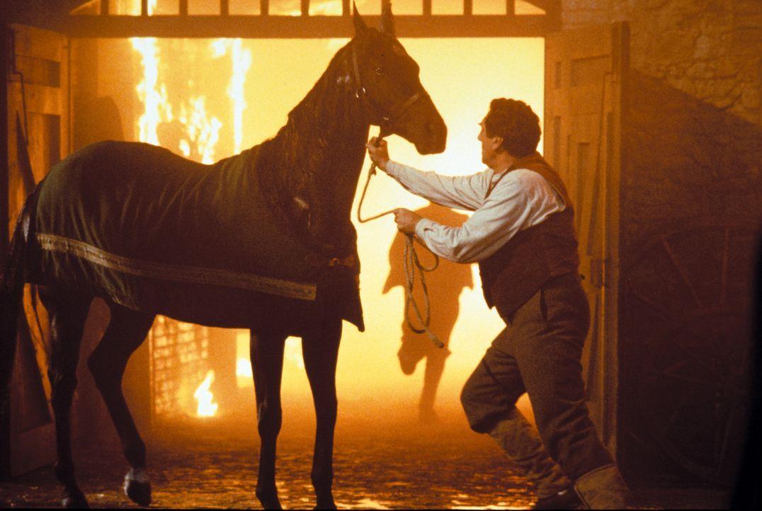 Da verursacht der Stallmeister John Manley (Jim Carter) im Alkoholrausch einen schweren Bran im Stall, bei dem Black Beauty schwer verletzt wird ... - Bildquelle: Warner Bros.