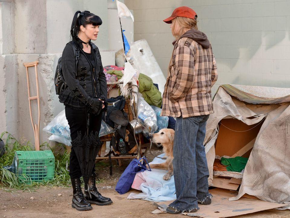 Im aktuellen Fall des NCIS-Teams spielt ein obdachloser Kriegsveteran eine wichtige Rolle. Bei ihren Recherchen lernt Abby (Pauley Perrette, l.) ein... - Bildquelle: CBS Television