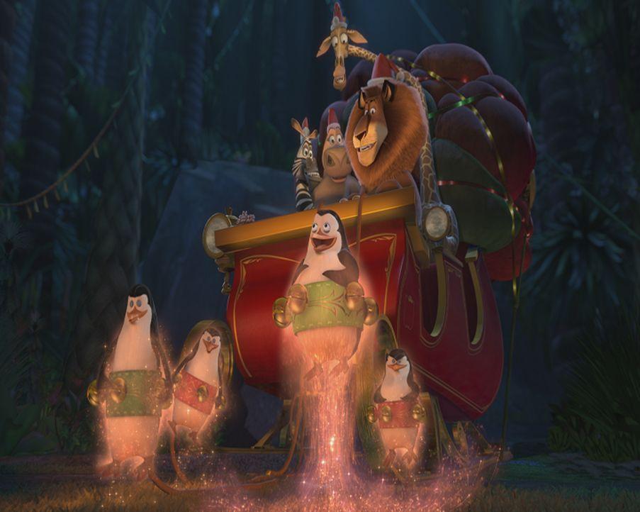 Es weihnachtet ... auch auf Madagaskar. Doch der Weihnachtsmann hat sein Gedächtnis verloren. Nun müssen Alex, Marty, Melman und Gloria die Geschenk... - Bildquelle: United International Pictures (UIP)