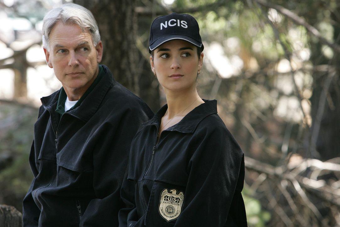 Versuchen den Fall des ermordeten Lieutenant Commander Carrie McLellan zu klären: Leroy Gibbs (Mark Harmon, l.) und Ziva David (Cote de Pablo, r.)... - Bildquelle: CBS Television