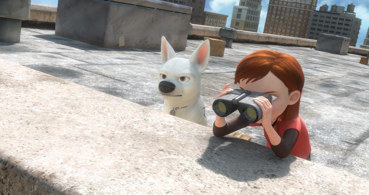 Die 14-jährige Penny (r.) spielt zusammen mit ihrem Hund Bolt (l.) die Hauptrolle in einer aufregenden Serie. - Bildquelle: Disney Enterprises, Inc.  All rights reserved