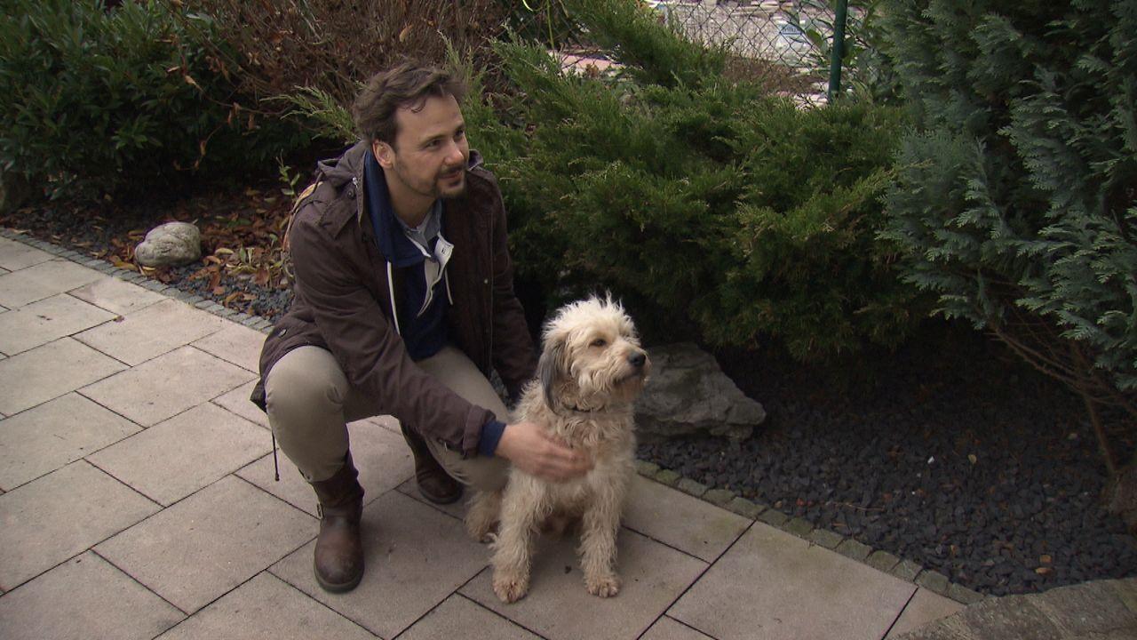 Mein-Bruder-mein-Hund-und-Eric25 - Bildquelle: SAT.1