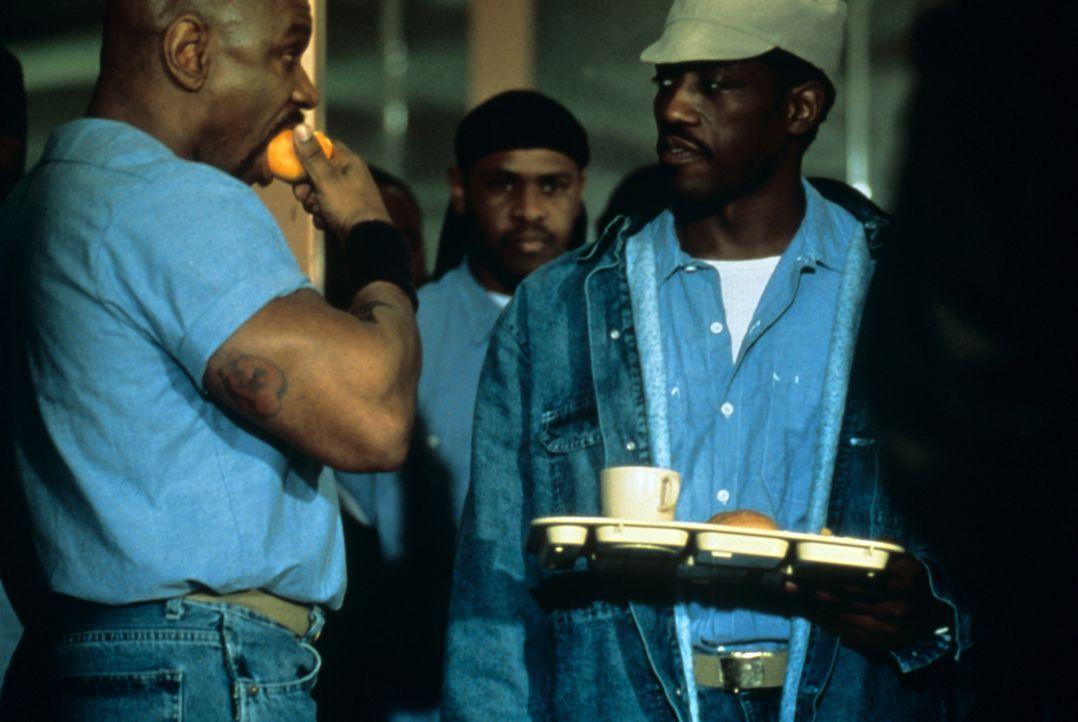 """Im Knast trifft der amtierende Schwergewichtsweltmeister James """"Iceman"""" Chambers (Ving Rhames, l.) auf den ungeschlagenen Boxchampion des Gefängnis... - Bildquelle: Miramax Films"""