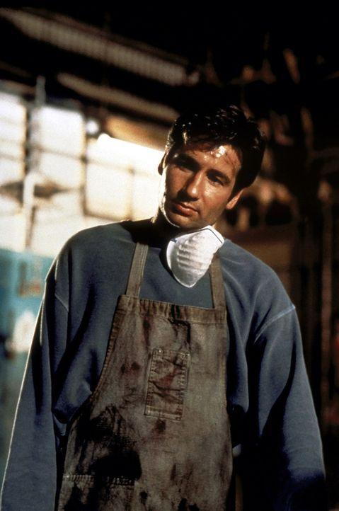 Als er einem angeschossenen Gangster mit einer improvisierten Operation das Leben rettet, kommt der arbeitslose Doc Eugene Sands (David Duchovny) in... - Bildquelle: Buena Vista Pictures