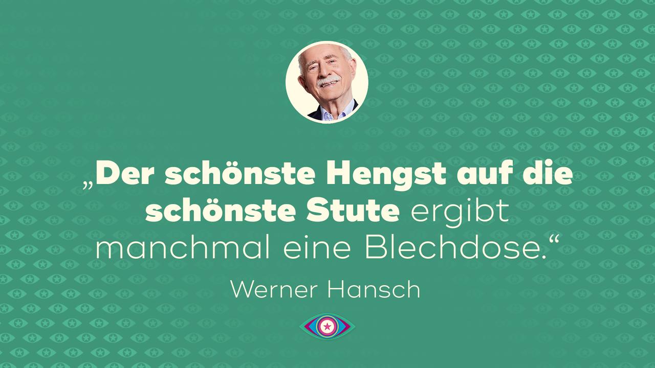 25_Werner