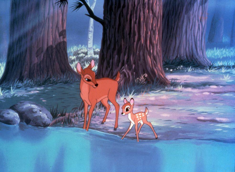 Als die Welt noch In Ordnung war: Mit seiner Mutter (l.) erlebt Bambi (r.) eine unbeschwerte Kindheit ... - Bildquelle: Disney