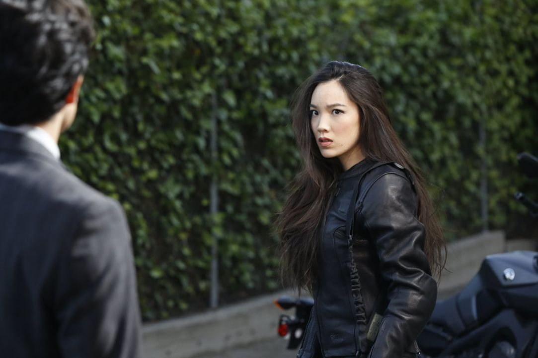 Detective Lee (Jon Foo, l.) kann nicht glauben, dass seine Schwester Kim (Jessika Van, r.), die er für tot gehalten hat, für chinesische Verbrechero... - Bildquelle: Warner Brothers
