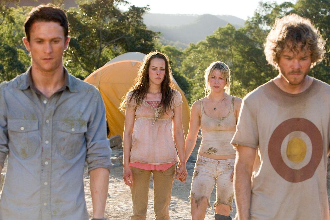 Die erste Begeisterung über den spontanen Urwaldtrip ist bei (v.l.n.r.) Jeff (Jonathan Tucker,), Amy (Jena Malone), Stacy (Laura Ramsey) und Eric (S... - Bildquelle: Vince Valitutti 2008 DreamWorks LLC. All Rights Reserved.