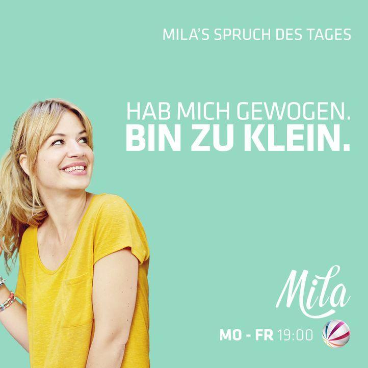Tag 5MILA_Spruch_FB zuKlein