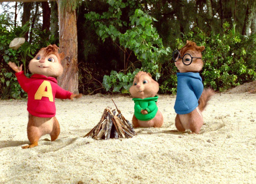 Ein waghalsiges Abenteuer wartet auf Alvin (l.), Simon (r.) und Theodore (M.) ... - Bildquelle: 2011 Twentieth Century Fox Film Corporation. All rights reserved.